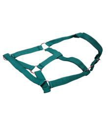 Scoobee Green Nylon Dog Standard Harness
