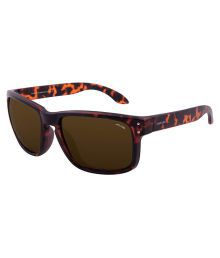 Arcadio Brown Wayfarer Sunglasses ( Aar207dm-br )