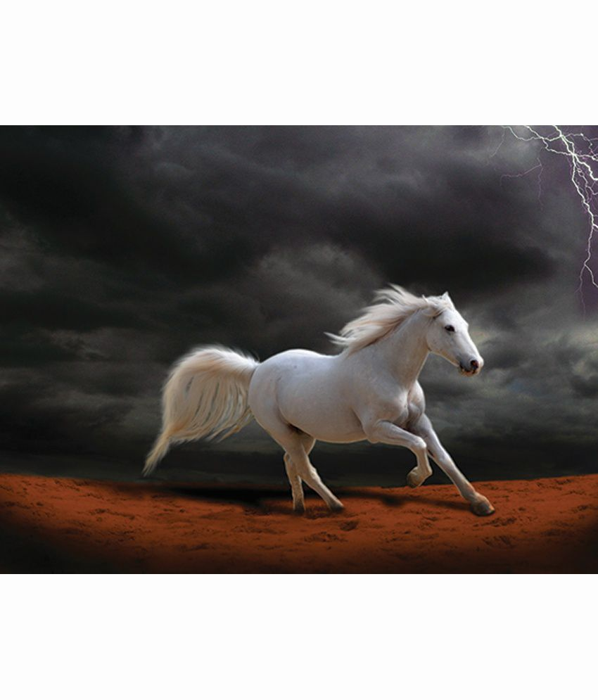 Retcomm Art Digital Art White Horse In Black Running Back Ground Animal Painting
