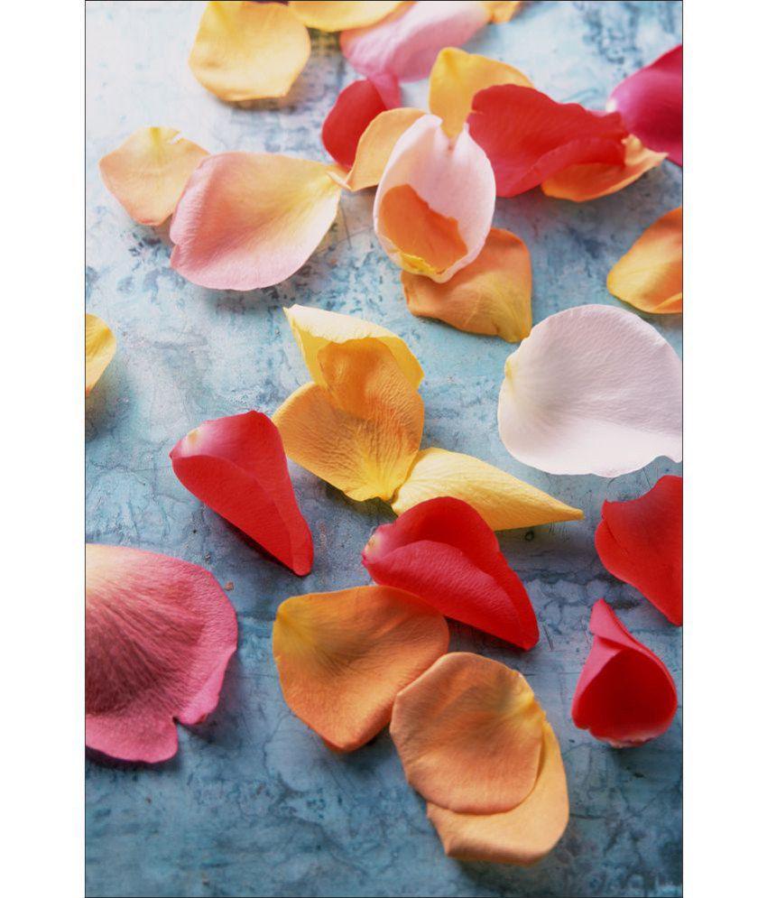 Retcomm Art Digital Print Wall Art Petals Floral Painting