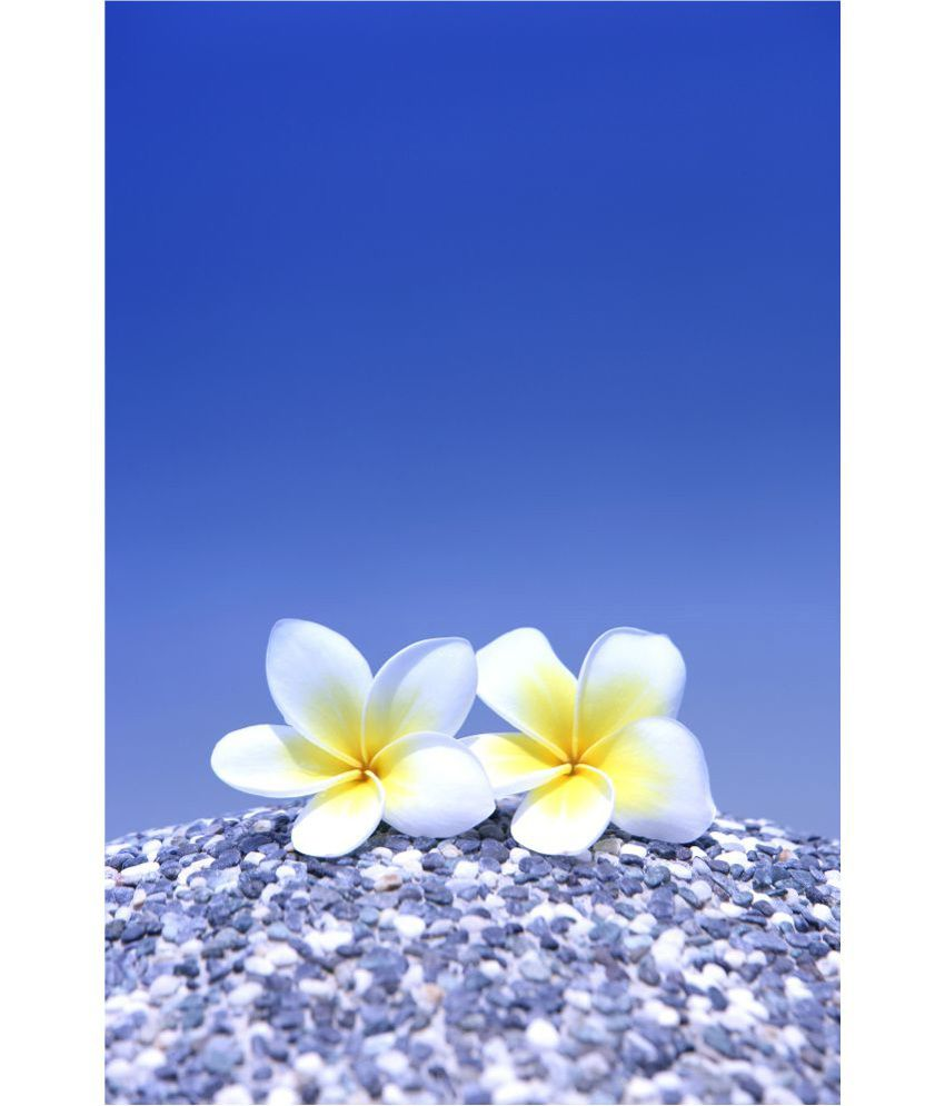 Retcomm Art Digital Print Wall Art Frangipani Floral Painting