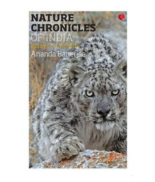 Essay on wildlife