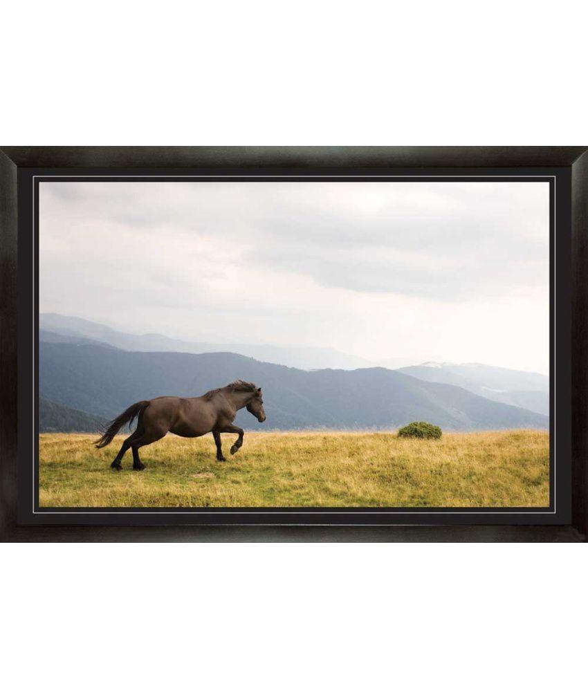 Mataye Graphics Acrylic Animal Painting
