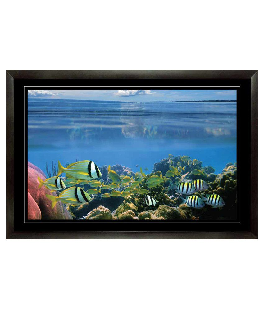 Mataye Graphics Fishes in Ocean Aquarium Paintings with Frame