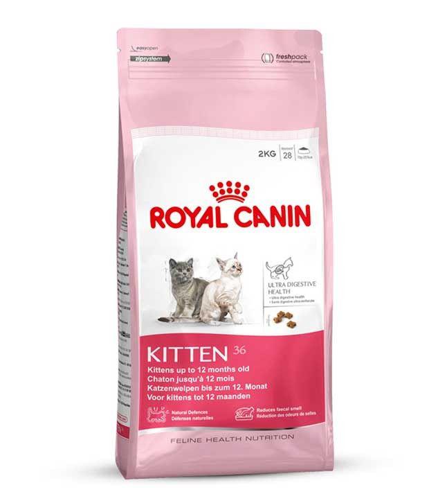 Royal Canin Kitten  Food Reviews