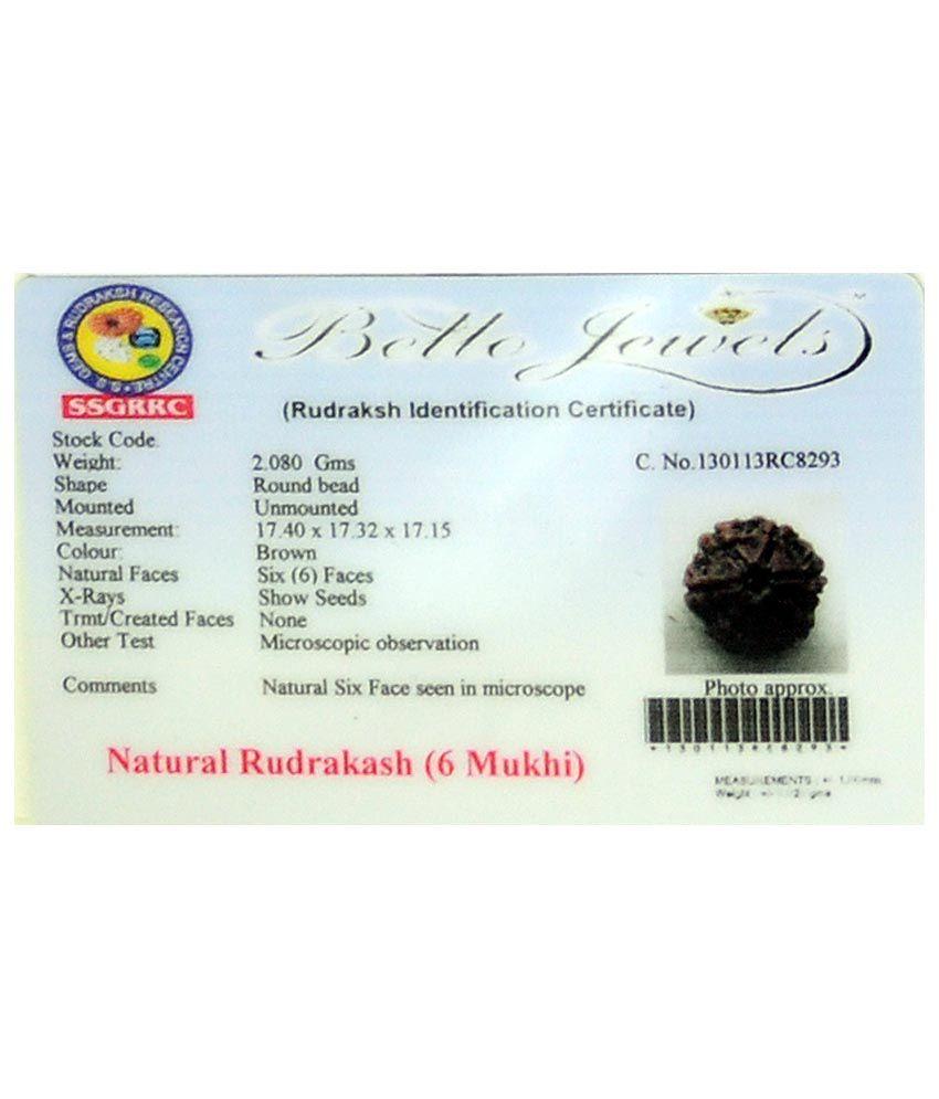 Certified 6 Mukhi Nepali Rudraksha Seed