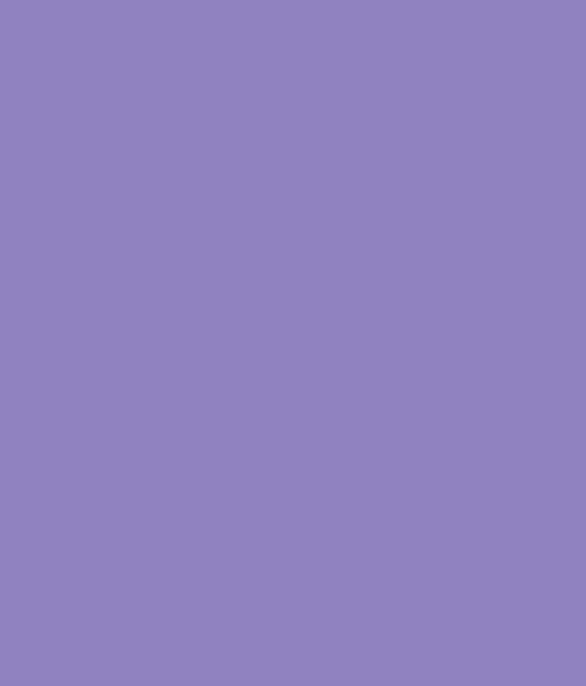 buy asian paints apcolite premium enamel gloss wild purple 0718 rh snapdeal com