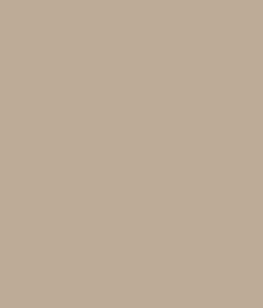 Buy asian paints ace exterior emulsion tropical tan online at low price in india snapdeal - Asian paints exterior emulsion concept ...