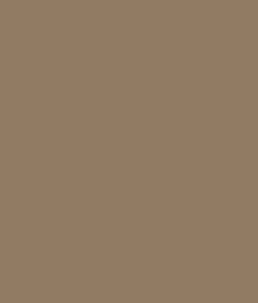 Buy asian paints ace exterior emulsion dull birch online at low price in india snapdeal - Asian paints exterior emulsion concept ...