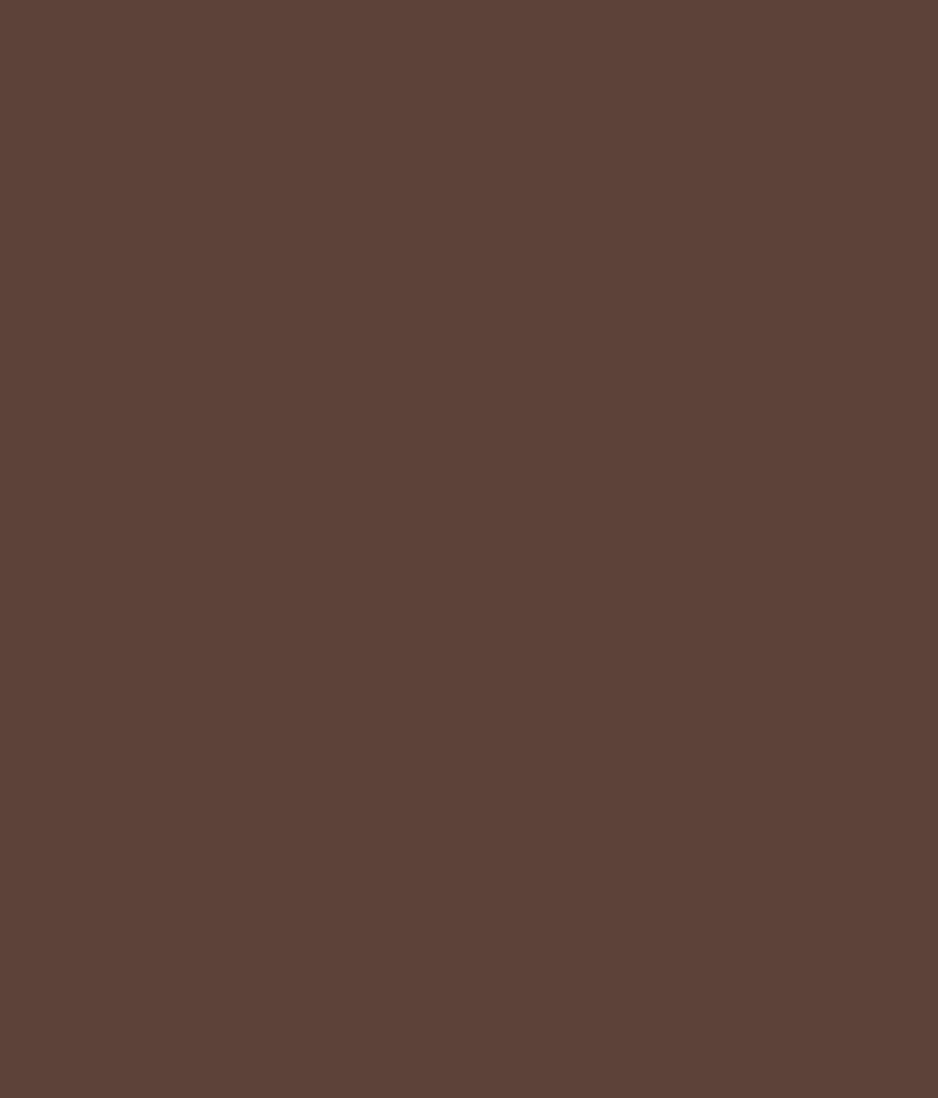Buy asian paints ace exterior emulsion weathercoat oak - Ace exterior emulsion shade cards ...