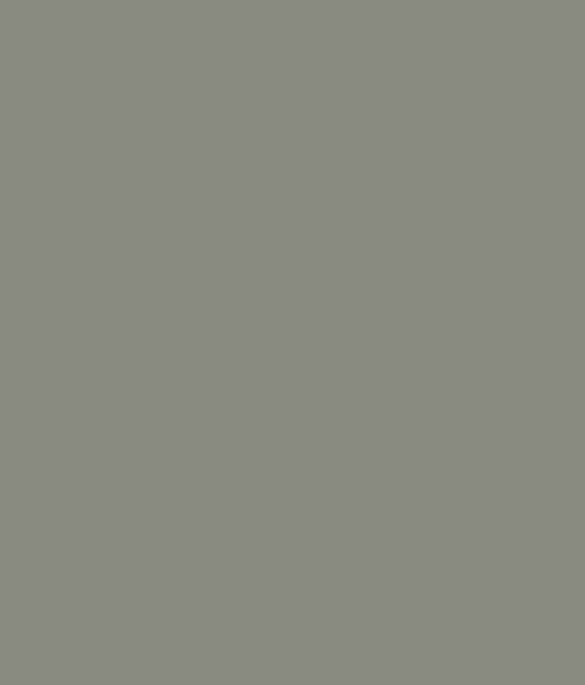Buy Asian Paints Ace Exterior Emulsion Burnished Grey