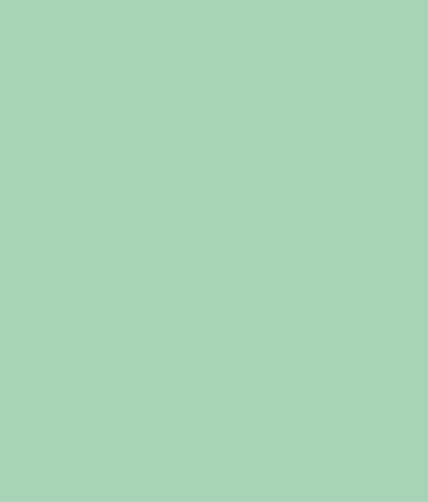 Buy asian paints ace exterior emulsion opaline green online at low price in india snapdeal - Asian paints exterior emulsion concept ...