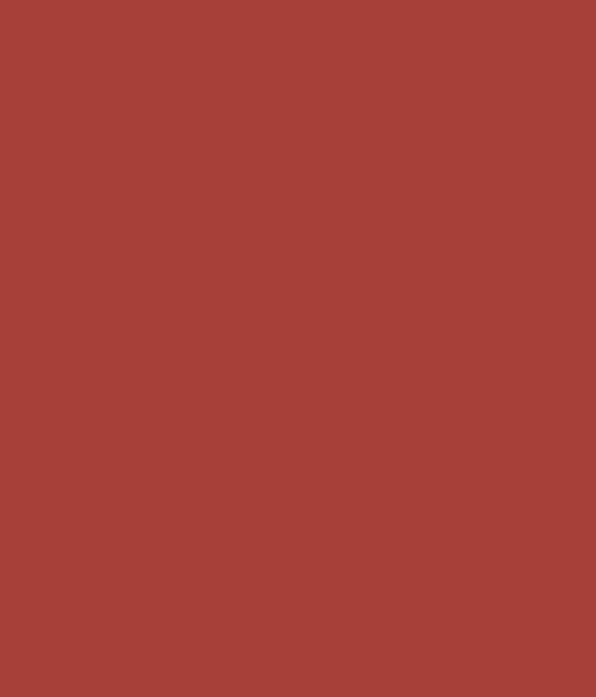 Buy Asian Paints Ace Exterior Emulsion Terracotta N Online At Low Price In India Snapdeal