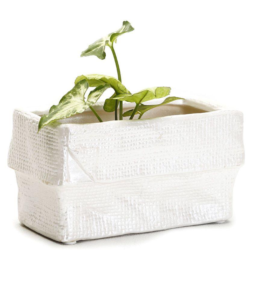 10 Rectangular White Ceramic Planter