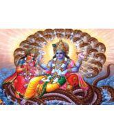 Amore Vishnu Ji And Laxmi Ji Poster