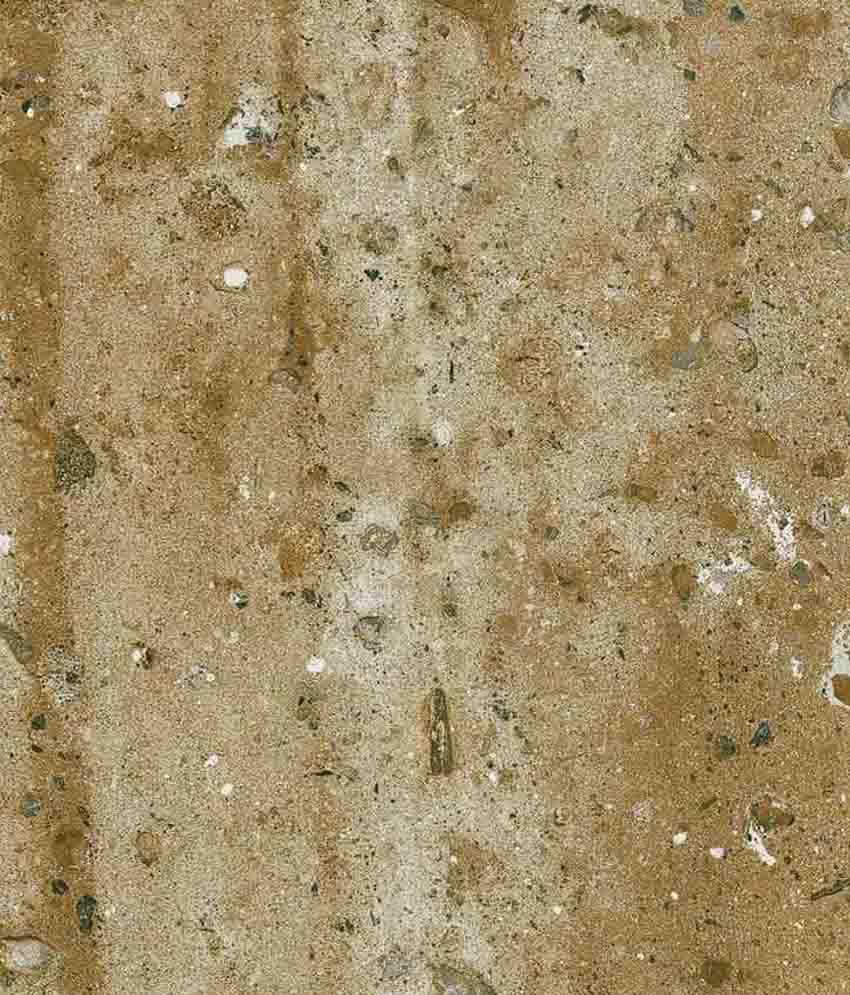 Buy nitco stone crest aurum white floor tile online at low price in nitco stone crest aurum white floor tile dailygadgetfo Images
