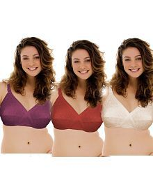 016096cafe12e1 Purple Bras  Buy Purple Bras for Women Online at Low Prices ...