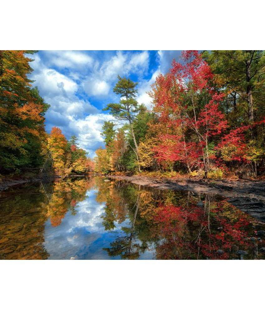 Wonder Images Pvt. Ltd. Beautiful Lakeside Scenery Canvas Art