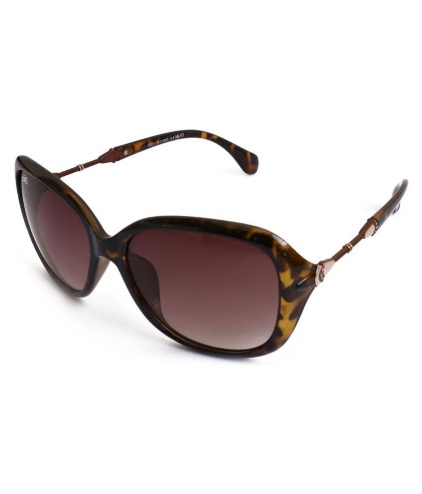 Roadster Brown Oversized Sunglasses