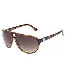 78dbb7dc14 Calvin Klein Sunglasses - Buy Calvin Klein Sunglasses Online at Best ...