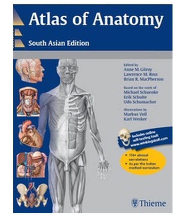 Atlas of anatomy gilroy 9747304 - togelmaya.info