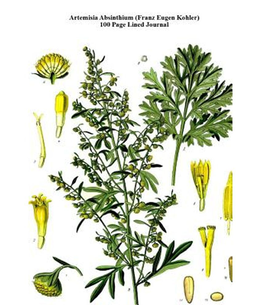 Artemisia Absinthium (Franz Eugen Kohler) 100 Page Lined Journal ...