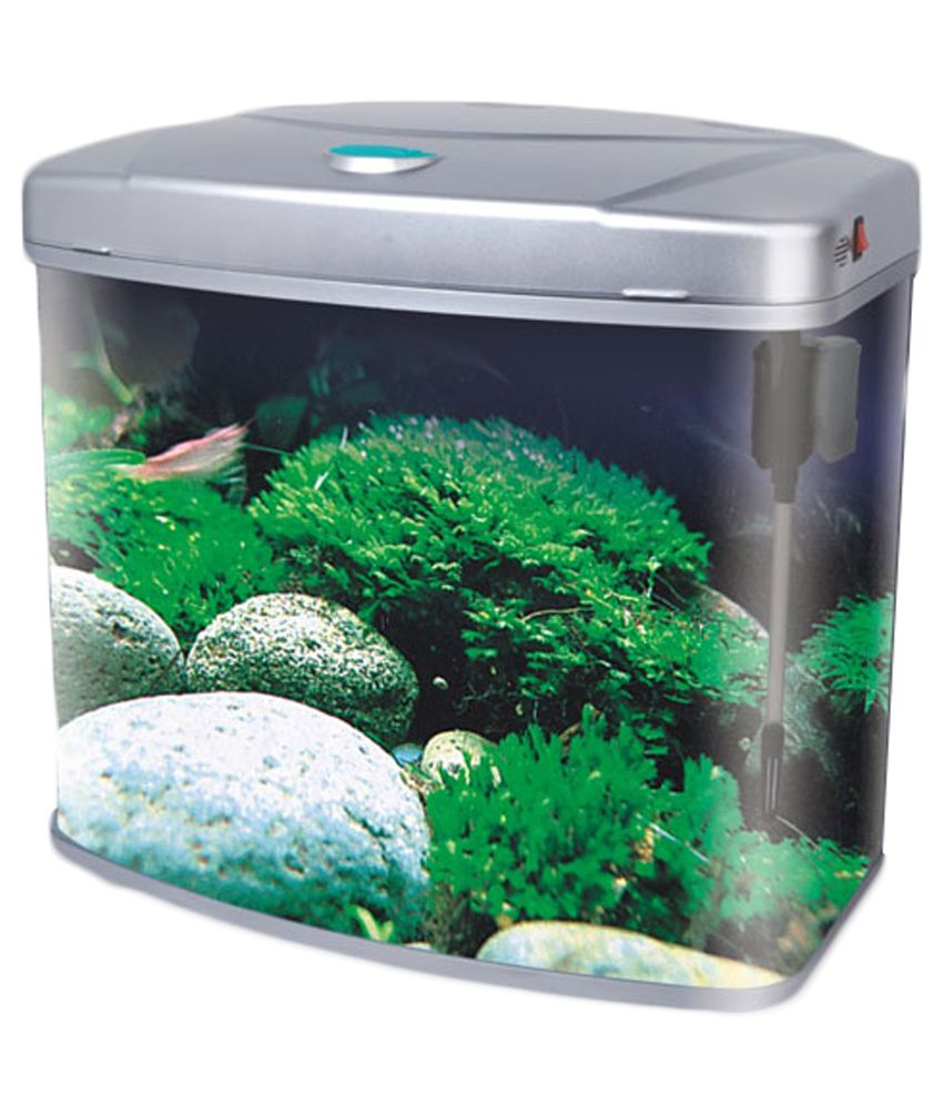 Fish aquarium online buy 1000 aquarium ideas for Aquarium fish online