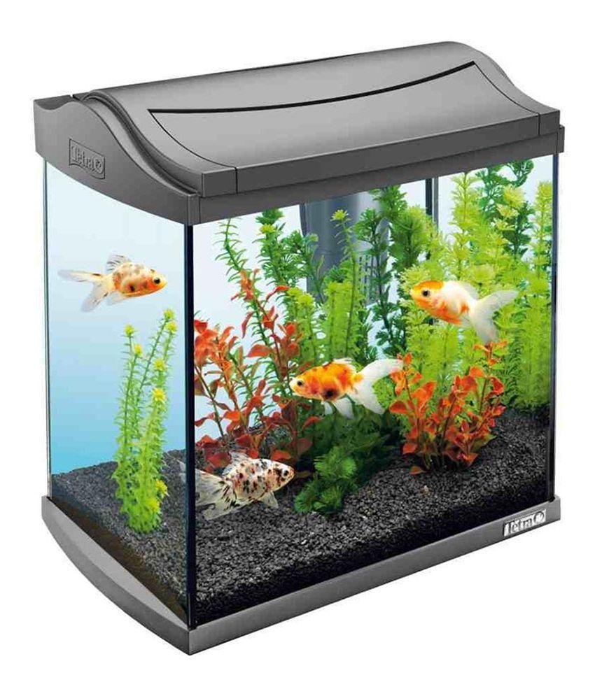 sagar fish black glass aquarium buy sagar fish black glass aquarium