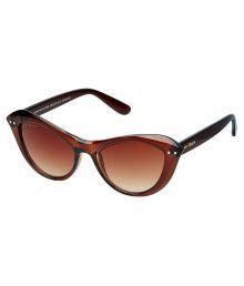 Joe Black Brown Cat Eye Sunglasses ( Jb-767-c2 )