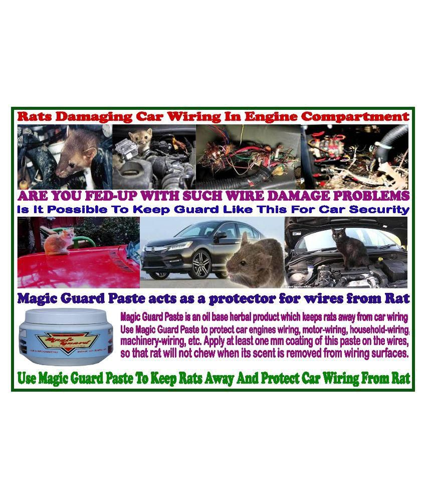 To Get Rid Of Rats Cut Wires In The Car Use Magic Guard Wiring Maruti 800 Technical Issues And Solutionsacwiringjpg Protector
