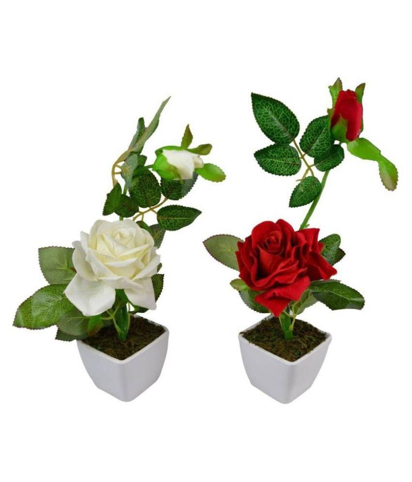 Uc Rose Flowers With Pot Multicolour