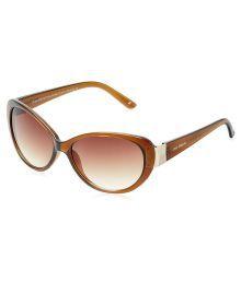 Joe Black Brown Cat Eye Sunglasses ( Jb-783-c3 )