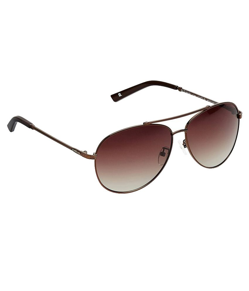 Joe Black - Brown Pilot Sunglasses ( JB-773-C3 )