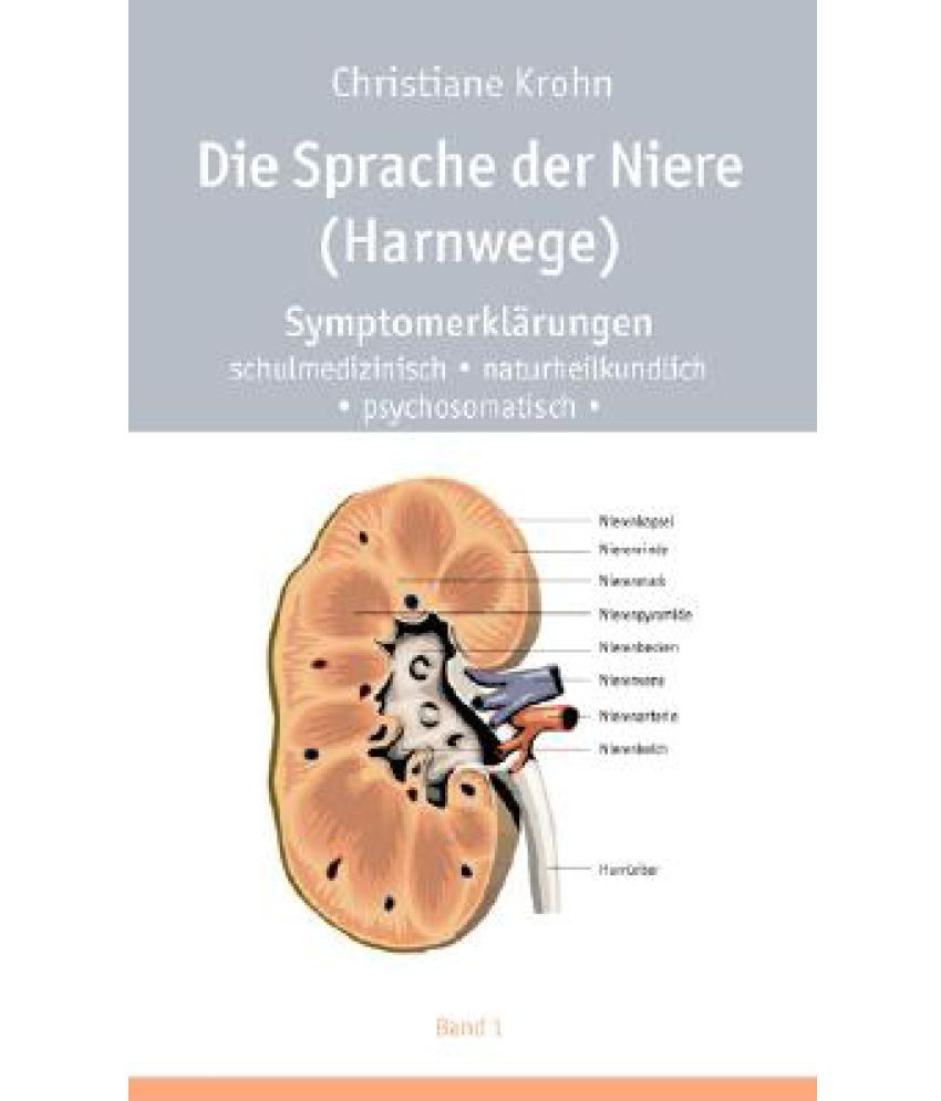 Charmant Niere Anatomie Und Physiologie Bilder - Anatomie Ideen ...