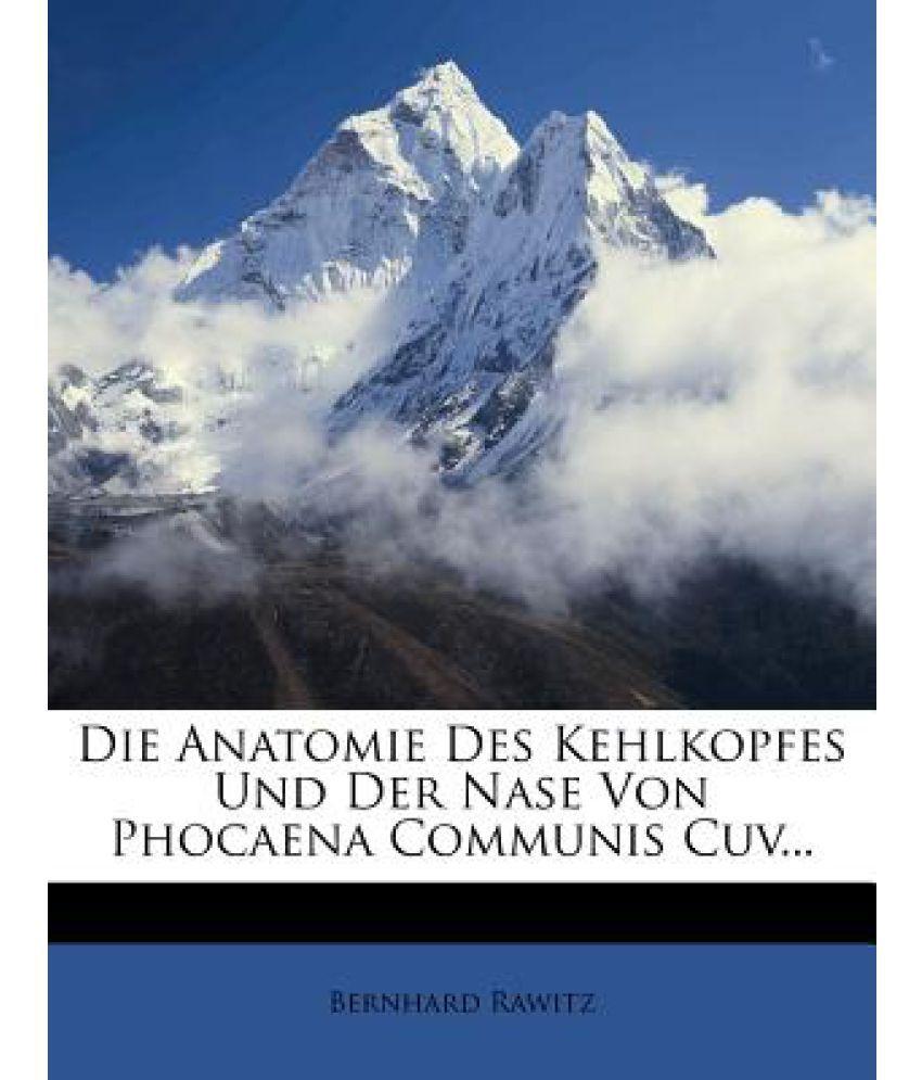 Ungewöhnlich Anatomie Und Physiologie Der Nase Zeitgenössisch ...