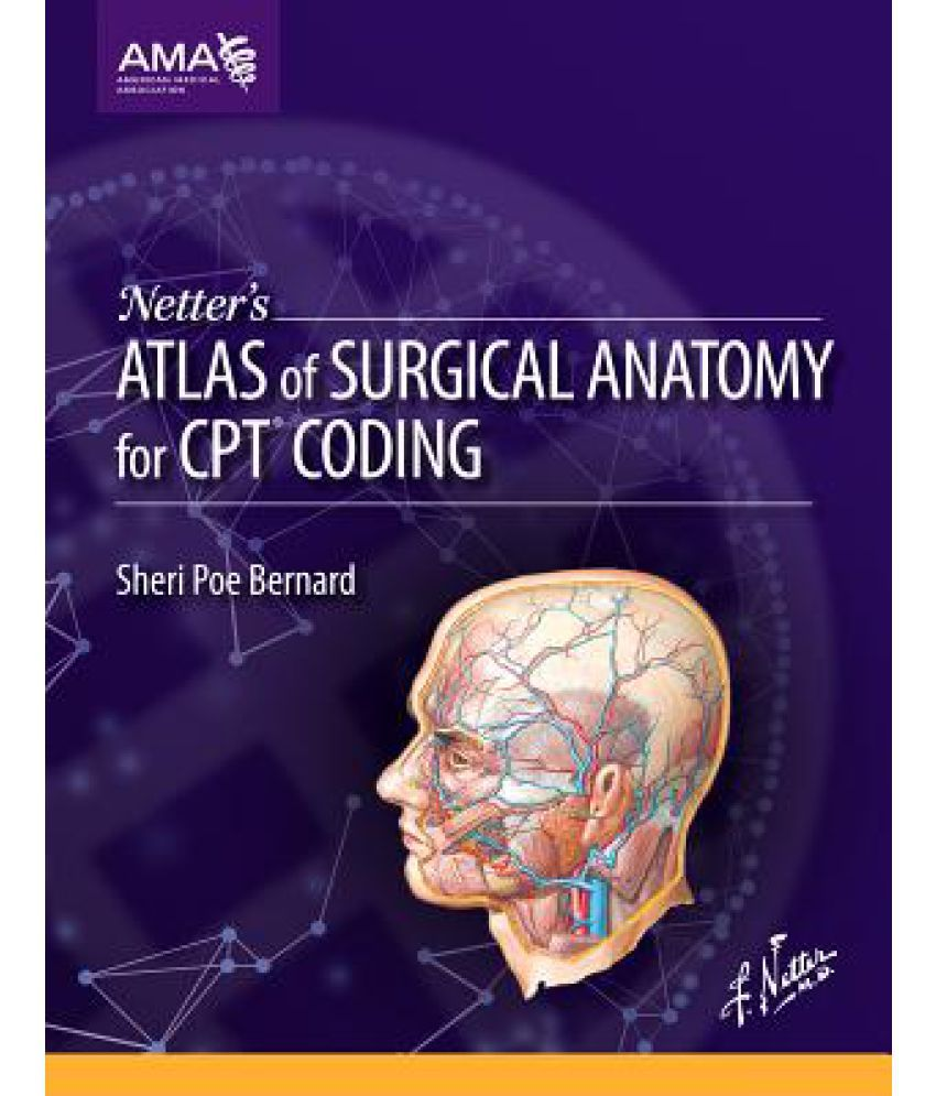 Netters Atlas Of Surgical Anatomy For Cpt Coding Buy Netters