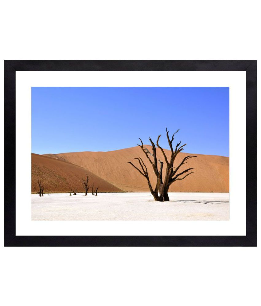 Craftsfest Amazing photography of desert Canvas Painting With Frame Single Piece