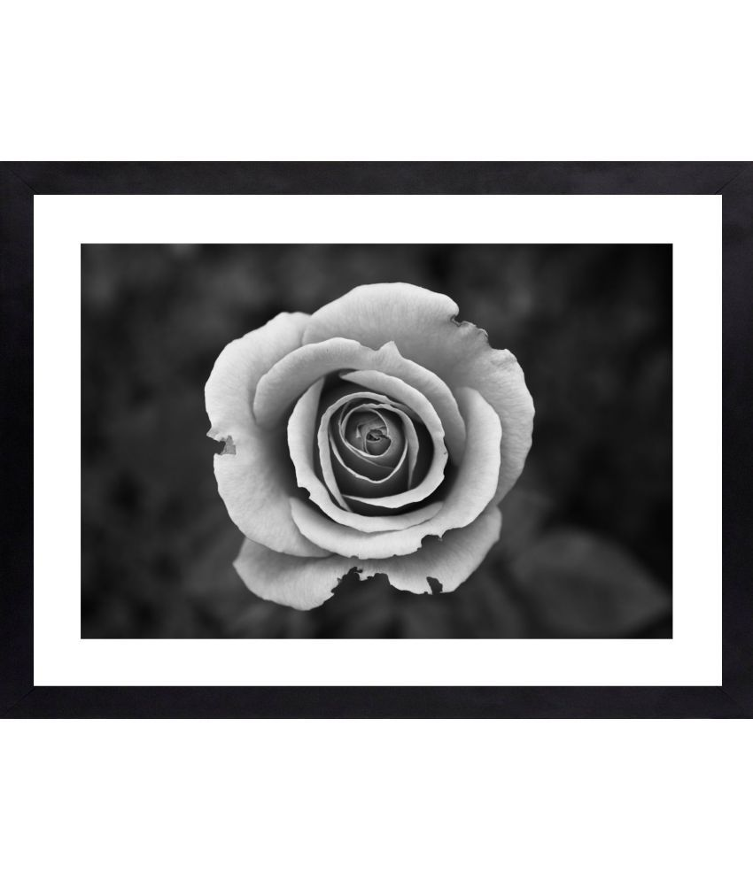 Craftsfest Amazing flowers Canvas Painting With Frame Single Piece