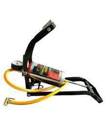 Raj Multicolor Pump