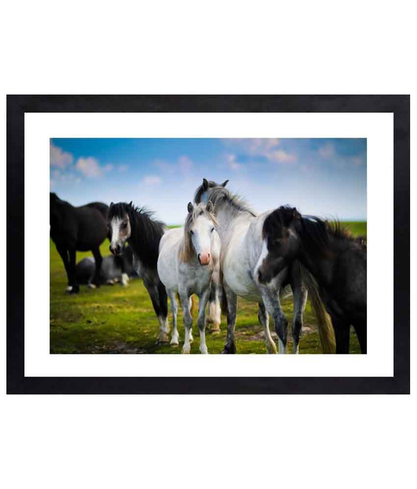 Craftsfest Amazing Horse Canvas Painting With Frame Single Piece