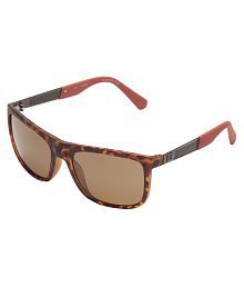 ab1eb9e5d80 Guess Sunglasses  Buy Guess Sunglasses Online at Best Prices in ...