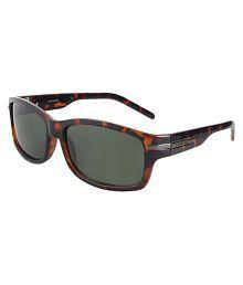 Polarized Sunglasses Online India  polaroid sunglasses polaroid sunglasses online at best prices