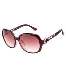 Clark N Palmer Brown Oversized Sunglasses ( D1558-s4 )