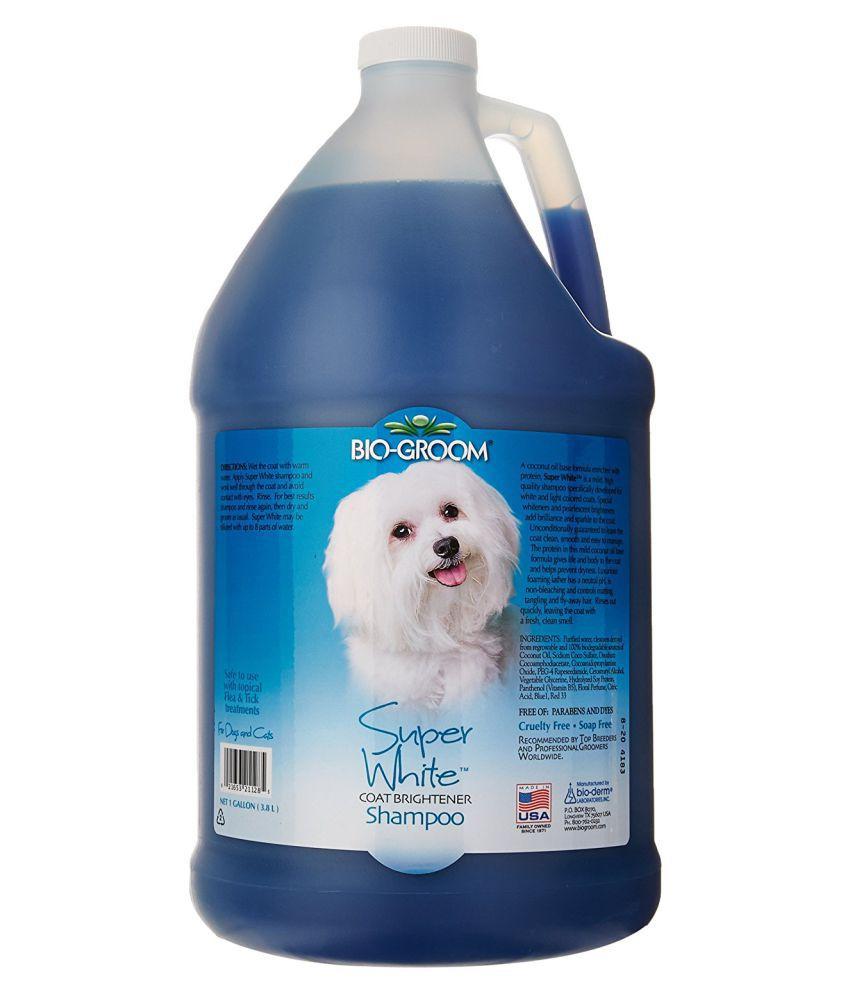 Bio Groom Shampoo