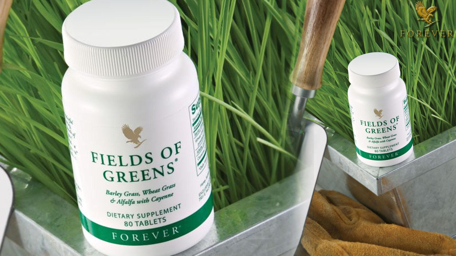 Forever fields of green 80 no s Vitamins Tablets Buy Forever fields