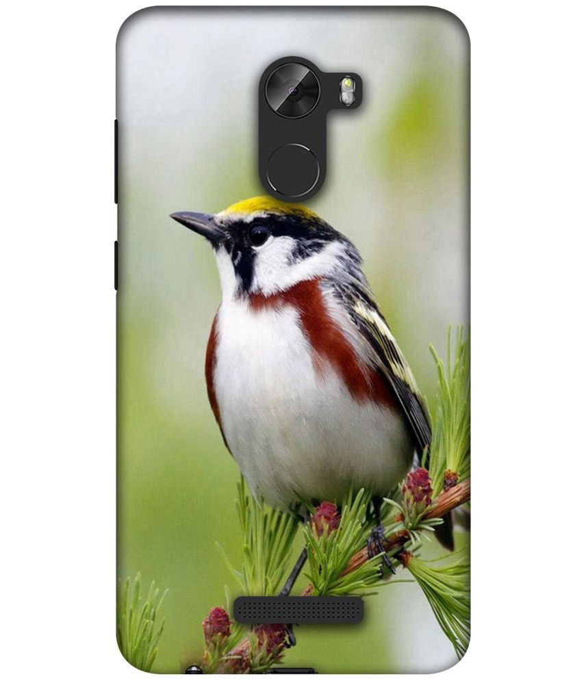 Gionee A1 Lite Printed Cover By Casotec