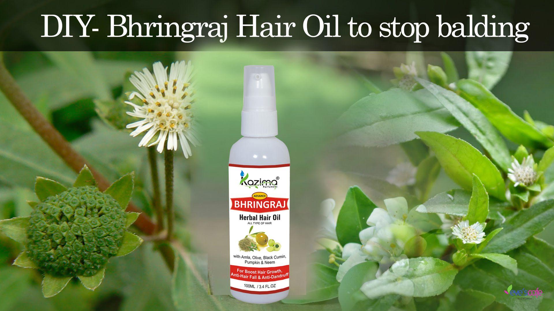 kazima bhringraj herbal hair oil for unisex 100 ml buy kazima