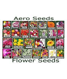 Aero Seeds Summer Garden Combo Of 675 Seeds 27 Varieties of Flower Seeds (Beautiful Bloom, High Germination Seeds) Instruction Manual Inside Package