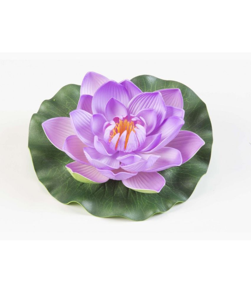 Green Plant Indoor Lotus Multicolour Floating Flowers Pack Of 2