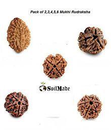 "Rudraksha Set 2,3,4,5,6 Mukhi Rurdraksh 100% Original and Very Rare by ""Make In India - Pick Use - SoilMade"""